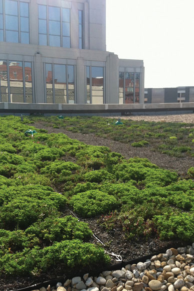 A green roof at 777 North Capitol St NW, funded in part by AWS