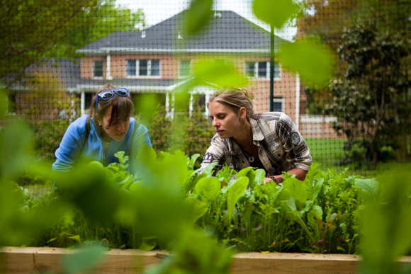 Shepherd teaches one of her new gardeners how to harvest salad leaves