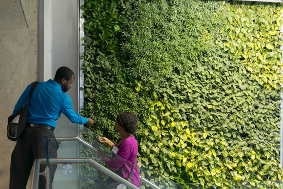 Visitors admire a living wall at the venue, which is watered by condensate from the building's air conditioning system